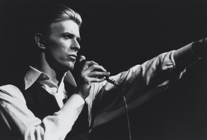 Bowie-4